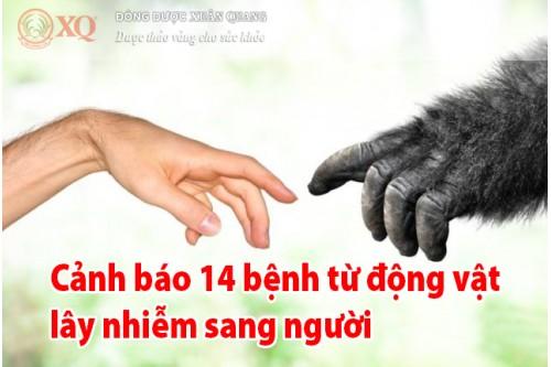 Cảnh báo 14 bệnh từ động vật lây nhiễm sang người